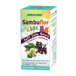 Экстракт черной бузины с цинком, пробиотиком и витамином C для детей Sambuflor